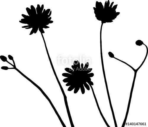 500x431 Wildflowers Silhouette Vector Illustration In Black And White
