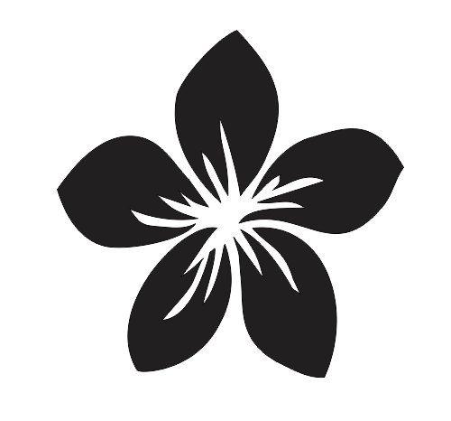 500x466 Plumeria Flower