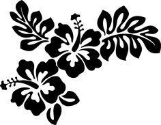 236x183 Dessin Fleur Hibiscus Noir Et Blanc