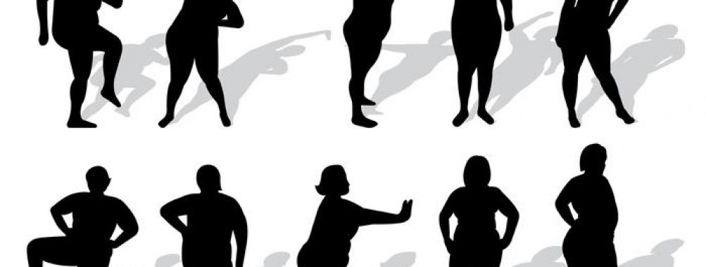 1003x380 Free Icons Of Plus Size Woman Silhouettes Vector Female.svg