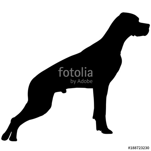 500x500 German Shorthaired Pointer Dog Silhouette Vector Graphics Stock