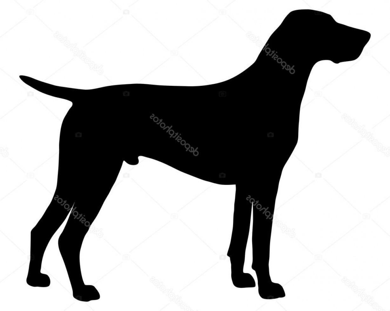 1228x982 Pointer Dog Vector Createmepink