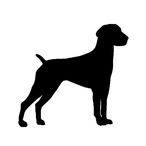 500x500 German Shorthaired Pointer Silhouette Decal