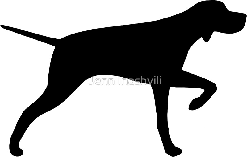 800x510 Pointer Dog Silhouette(S)' Sticker By Jenn Inashvili Pointer Dog