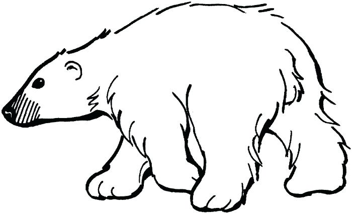 700x426 How To Draw A Bear Outline Drawings Outlines And Bears How To Draw