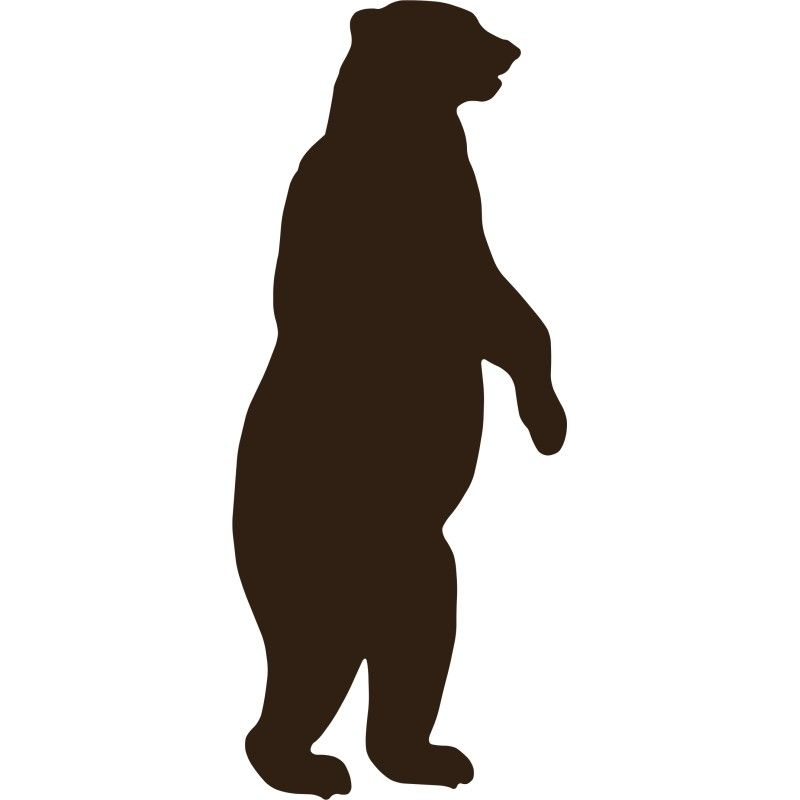 800x800 Standing Grizzly Bear Silhouette Images Room Bear