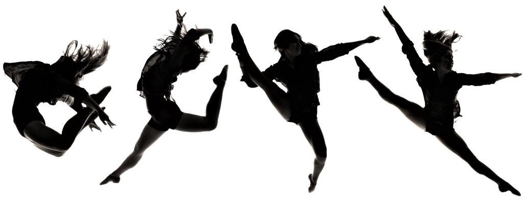1024x404 Douglas County Varsity Pomsdance Team