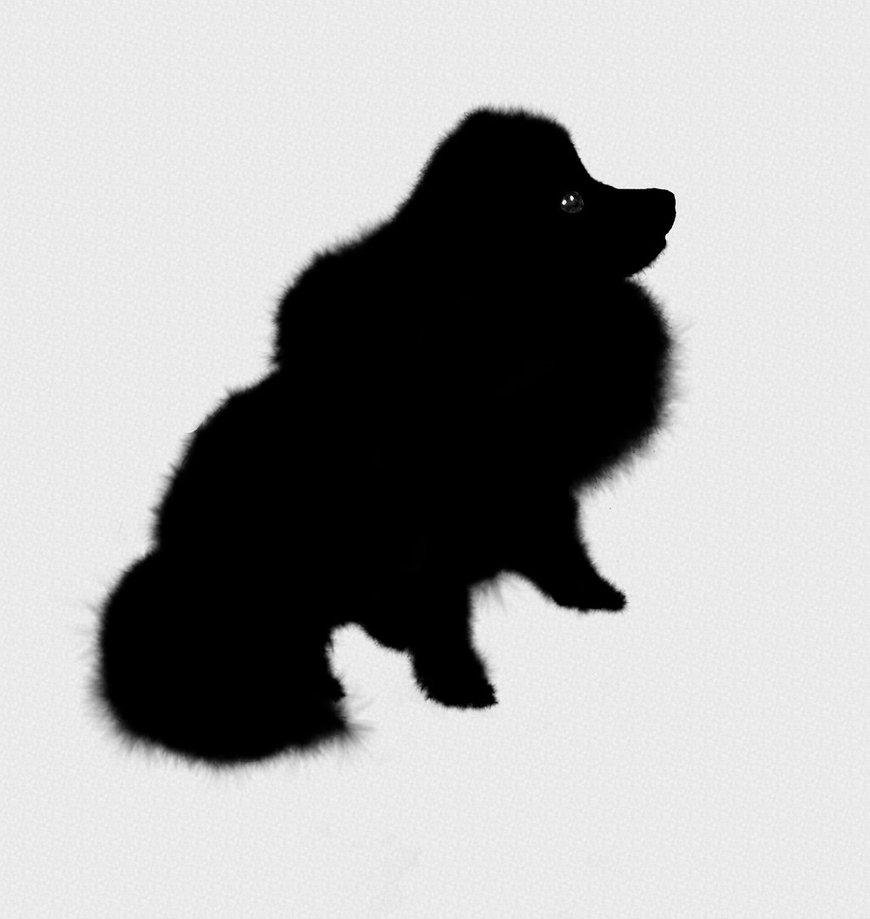 870x919 Pomeranian Silhouette By Soren The Jnaii Tyto
