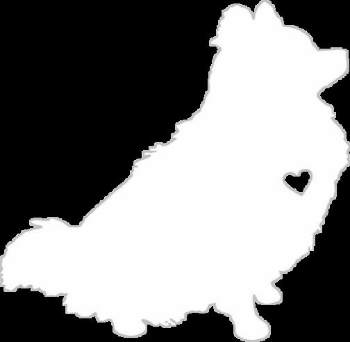 504x492 Pomeranian Silhouette Dog Pom