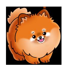 220x220 Pomeranian Dog