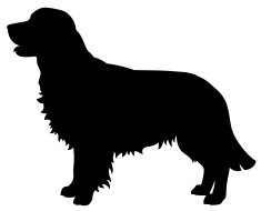 235x190 Golden Retriever Dog Silhouette Vector Art Illustration