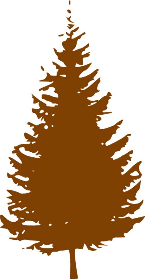 500x958 Tree Removal Information Madera County