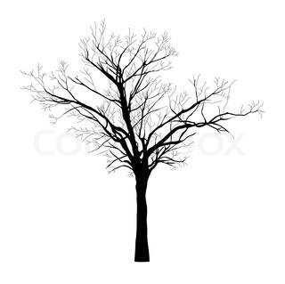 320x319 Black Silhouette Of Tree