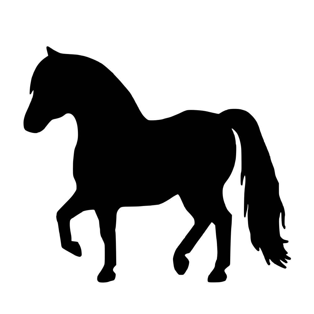 1000x1000 Equine Silhouette Mini Pony