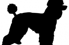 228x150 Poodle Silhouette Coloring Page 2019