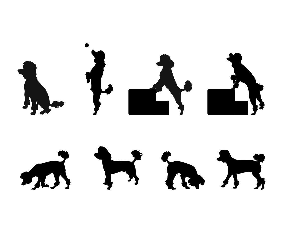 1136x936 Poodle Silhouette Set Vector Art Amp Graphics