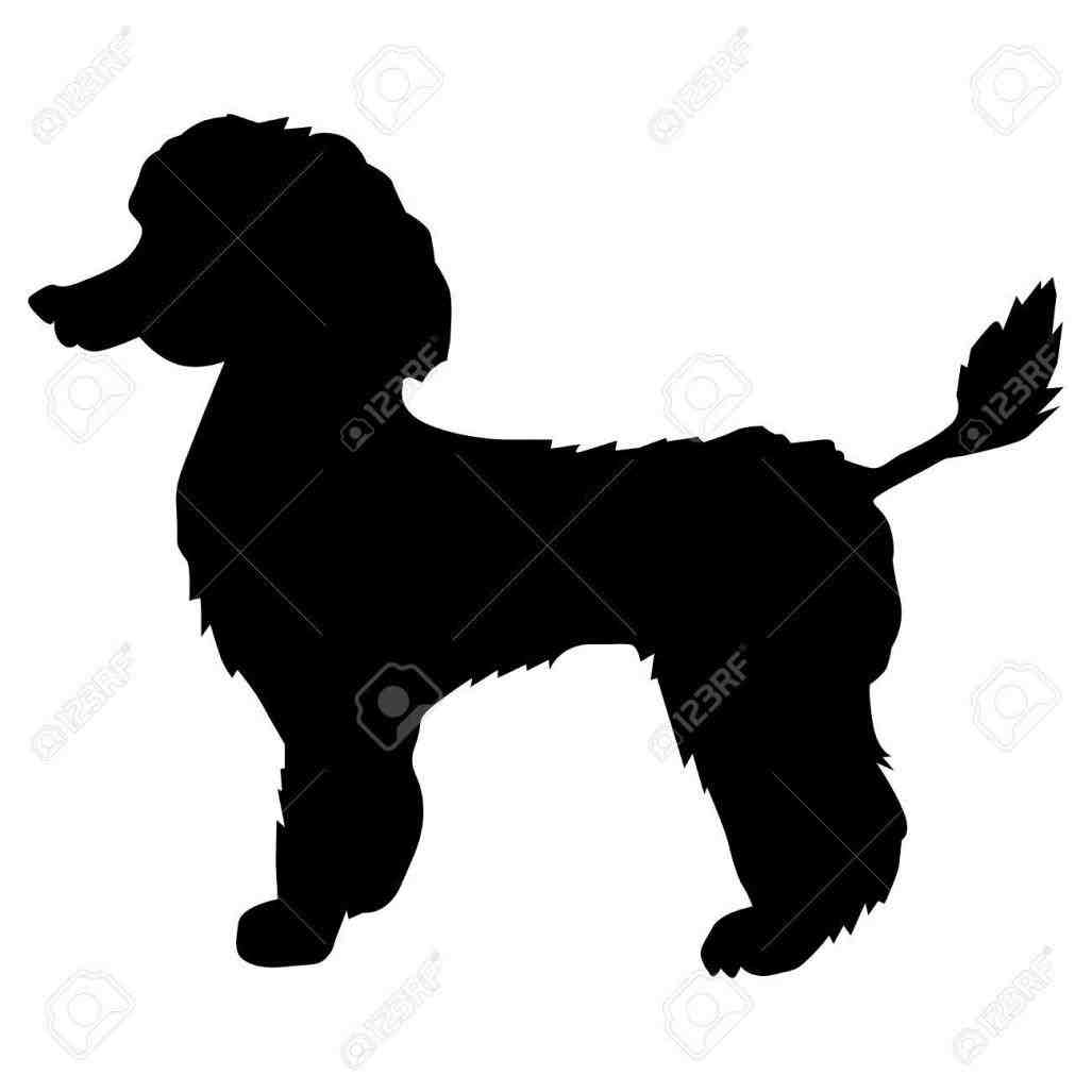 1027x1027 Poodle Silhouettes Clipart Clip Art Library Silhouette Set Vector
