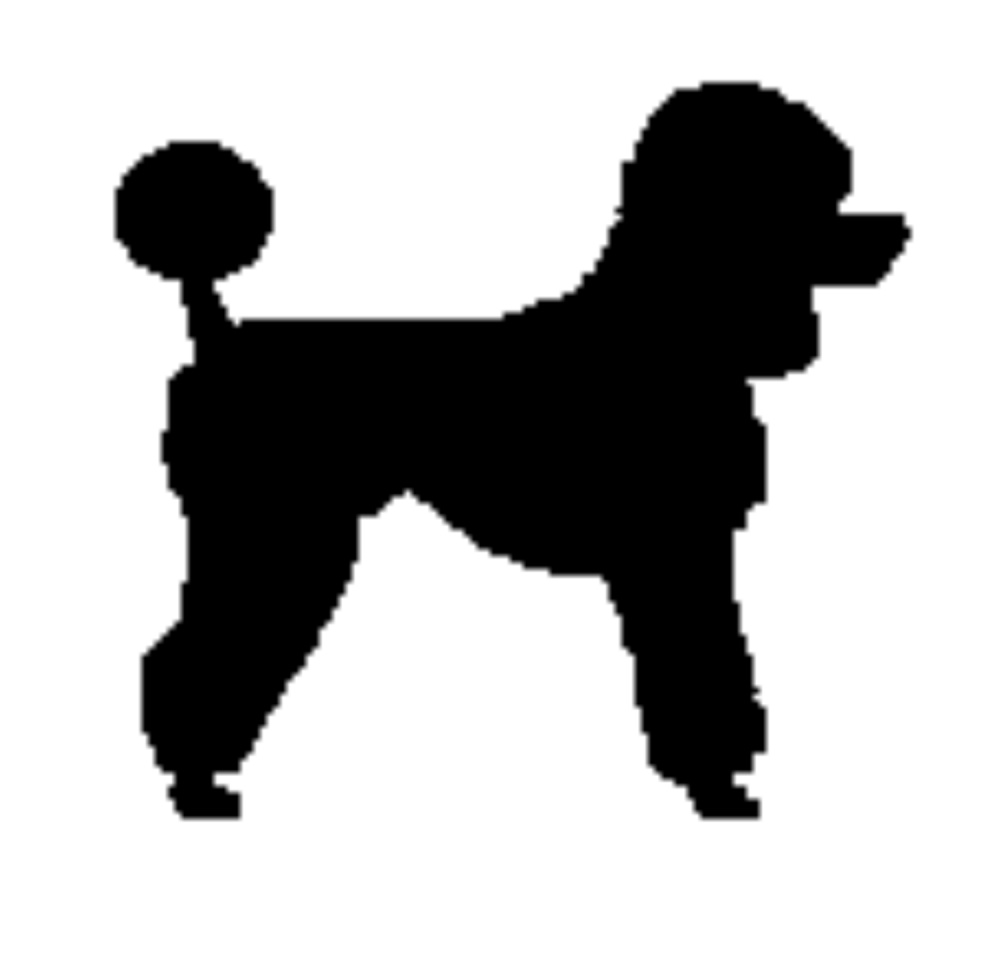 1000x954 Silhouette Clipart Poodle Pencil And In Color Mesmerizing