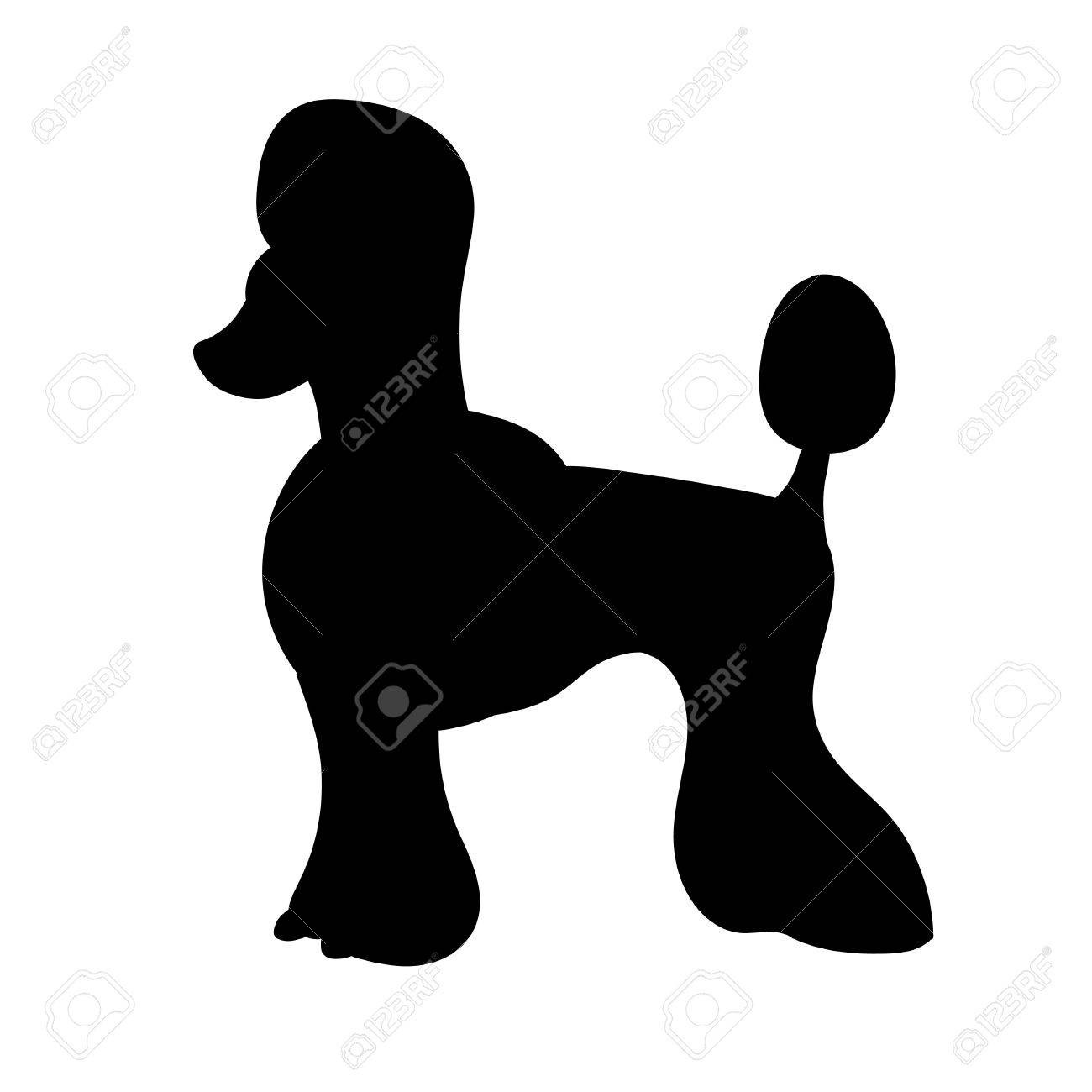 1300x1300 Silhouette Of Poodle Isolated On White Background Funny Dog