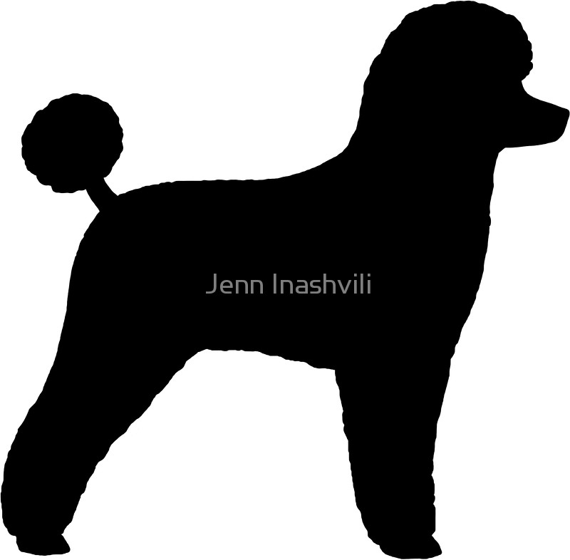 800x786 Black Toy Poodle Silhouette(S) Stickers By Jenn Inashvili Redbubble