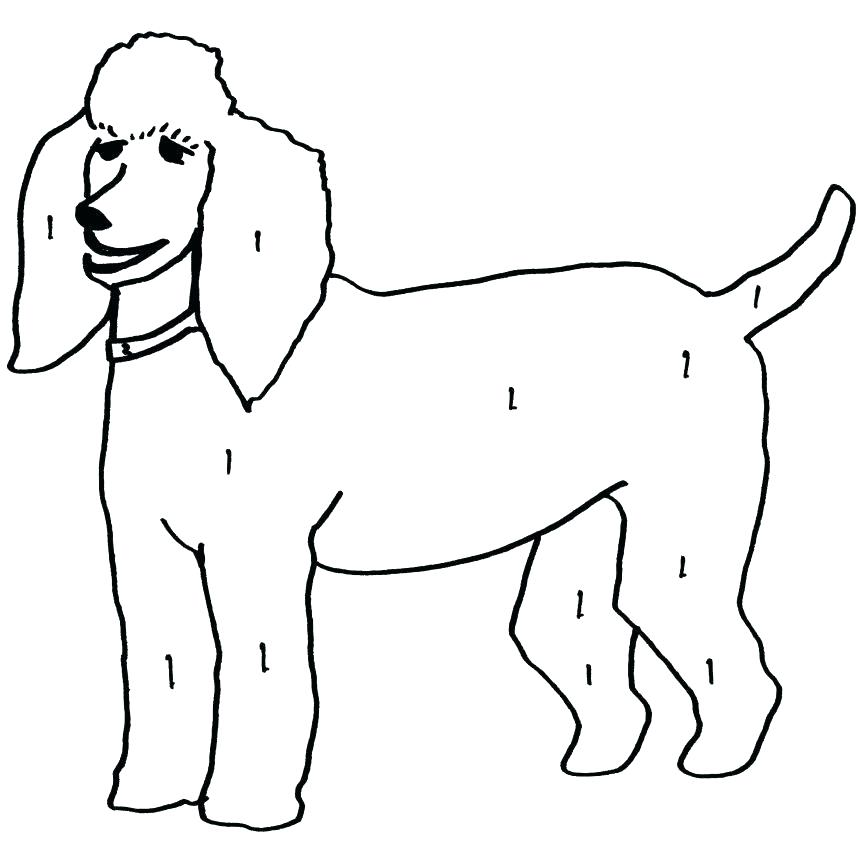 863x863 Poodle Coloring Page Toy Or Miniature Poodle Show Cut Coloring