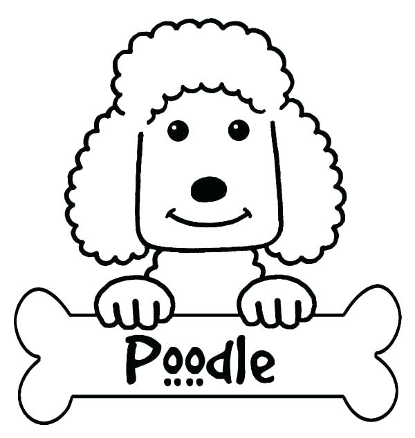 600x634 Poodle Outline For Poodle Skirt Top Rated Poodle Coloring Page