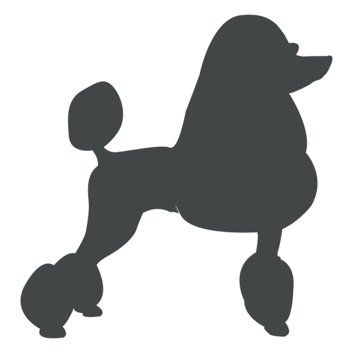 512x512 Poodle Silhouette Posing