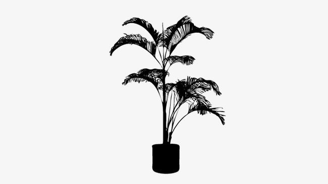 650x366 Pot Silhouette, Plant Silhouette, Vector Plant Png And Vector