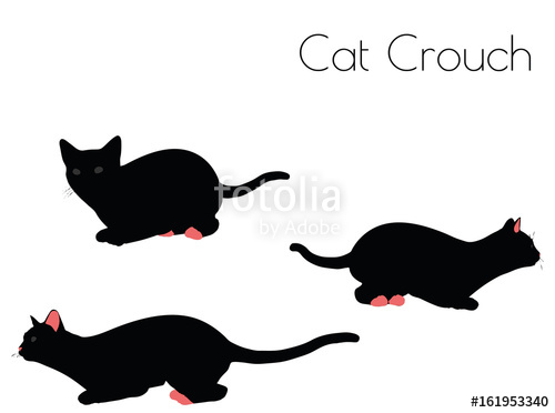 500x372 Cat Silhouette In Crouch Pose Stock Image And Royalty Free Vector