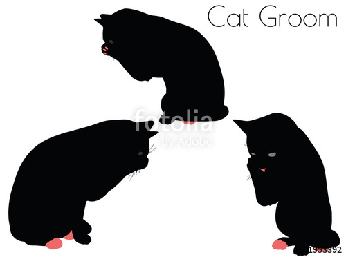 500x372 Cat Silhouette In Pounce Pose Stock Image And Royalty Free Vector