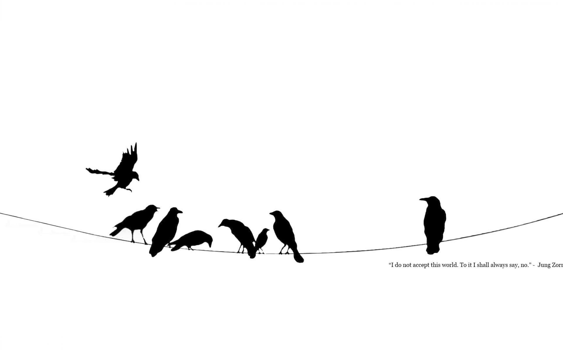 1920x1200 Black And White Crows Minimalistic Power Lines Quotes Wallpaper