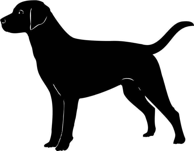 784x611 Lab Dog Clipart Black And White