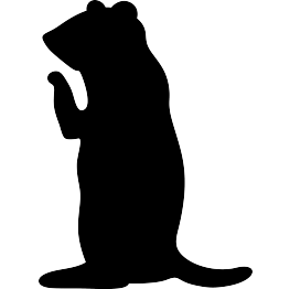 263x262 New Silhouettes Pot Of Gold, Prairie Dog, And More