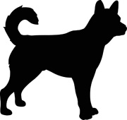180x170 Search Results For Dog
