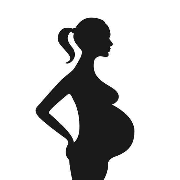 612x612 Pregnant Clipart Black And White
