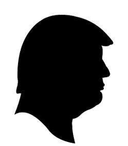 249x285 President Trump