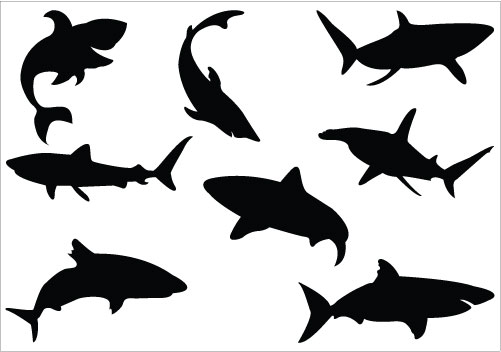 501x352 Shark Silhouette Vector, Ideal For Ocean And Sea Vector Graphics