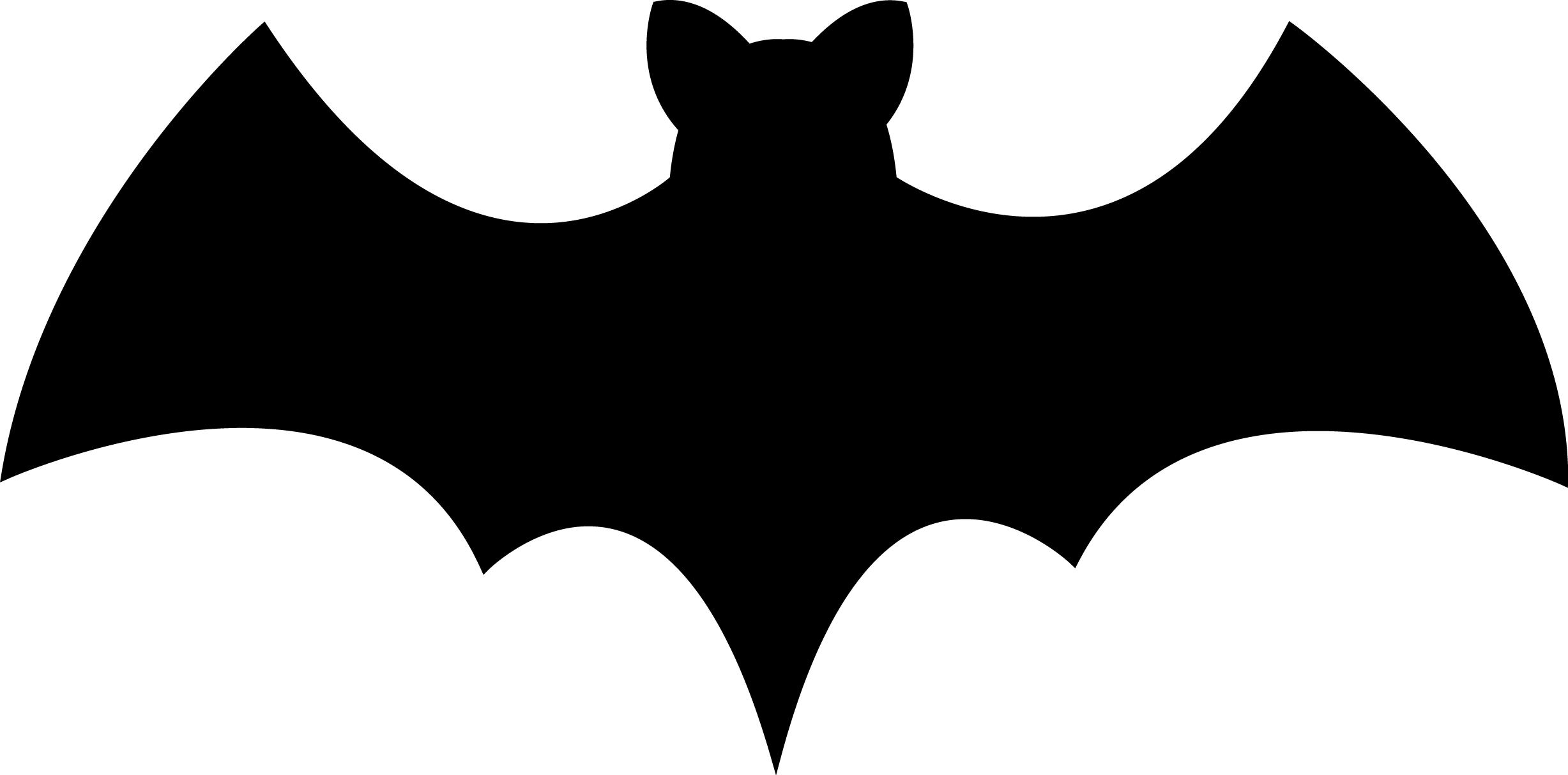 2455x1213 Bat