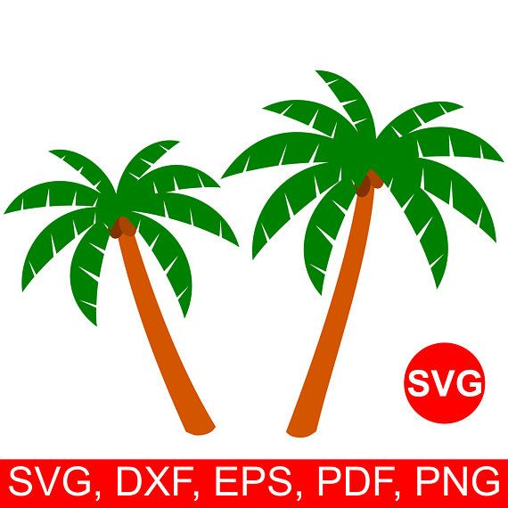570x570 Palm Tree Svg File For Cricut, Palm Tree Clipart, Palm Tree Dxf