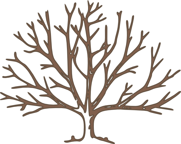 graphic relating to Free Printable Tree identified as Printable Tree Silhouette at  Free of charge for