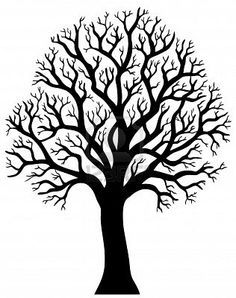 236x298 Silhouette Of Tree Without Leaf