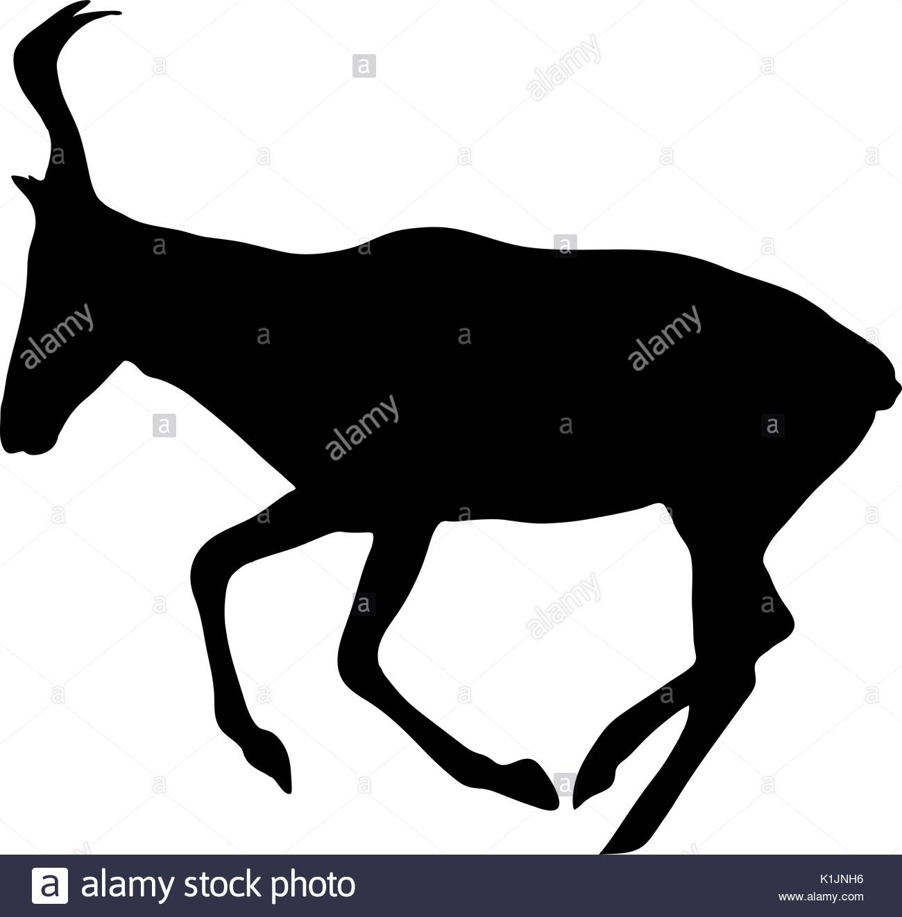 1300x1323 Antelopes Stock Vector Images