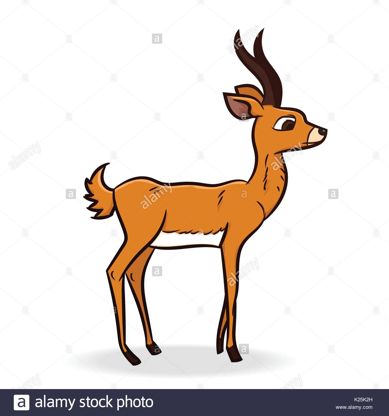 1300x1390 Antelope Cut Out Stock Images Amp Pictures