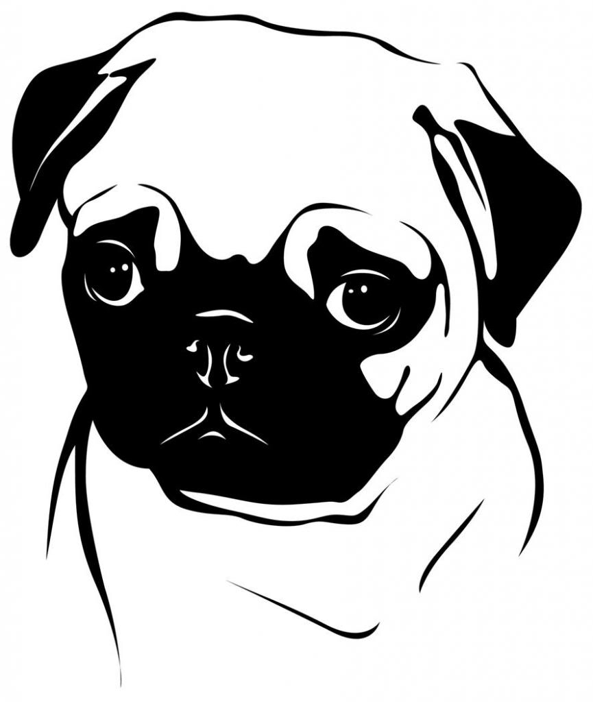 Pug Silhouette Vector At Getdrawings Com Free For