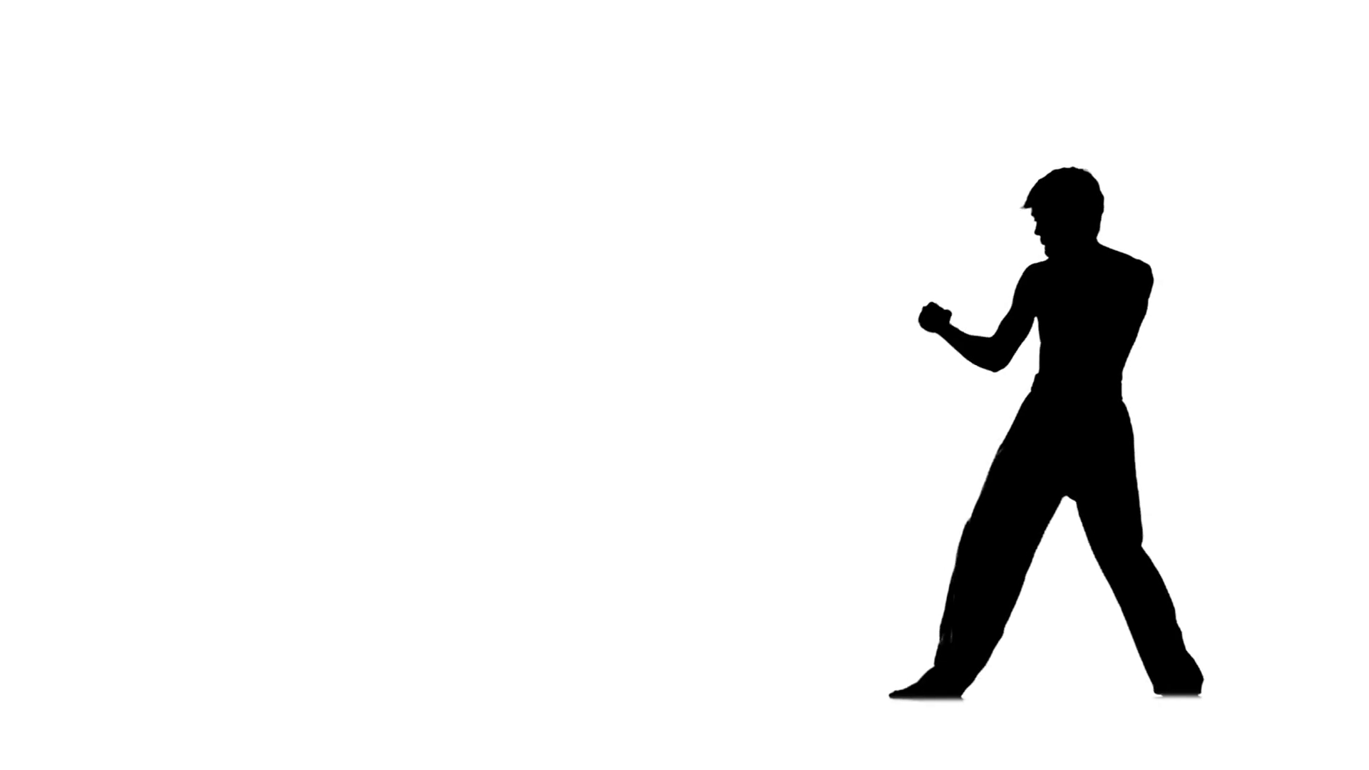 1920x1080 Man Training Taekwondo Or Karate Jumping, High Kick And Fist Punch