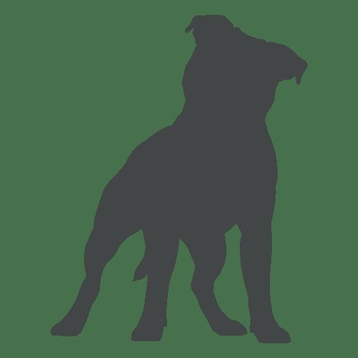 512x512 Puppy Dog Silhouette Posing