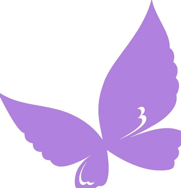 586x609 Butterfly, Elaborate, Silhouette, Outline, Purple, Design, Project