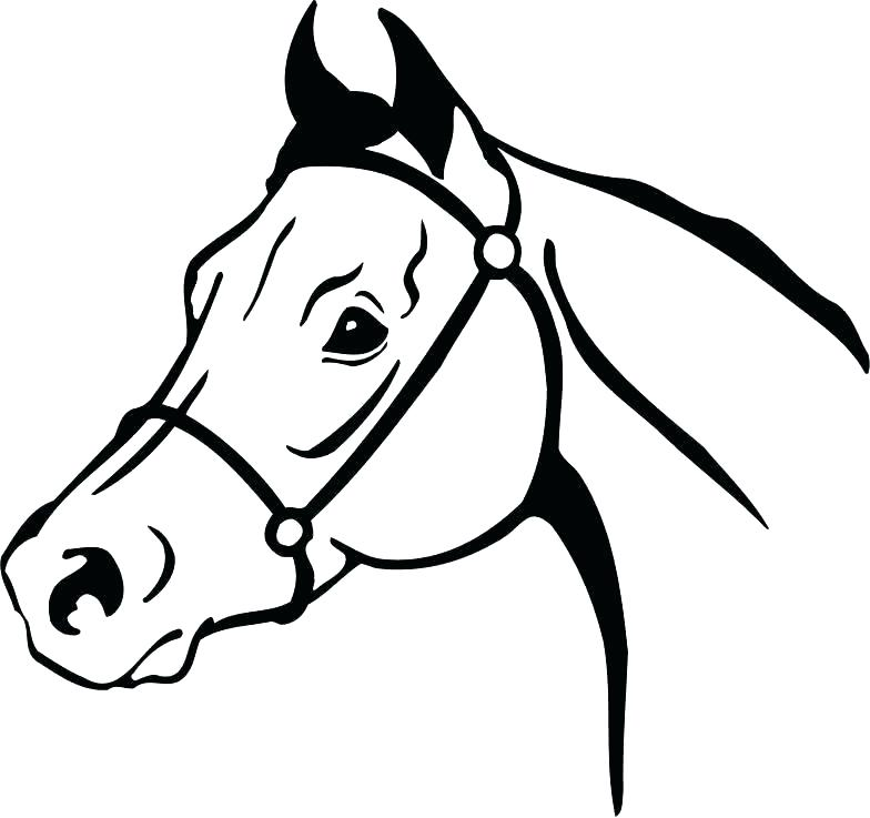 Quarter Horse Head Silhouette at GetDrawings.com | Free for personal ...