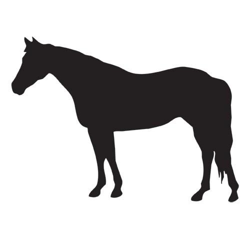 500x500 Magnetic Silhouette Set Quarter Horse