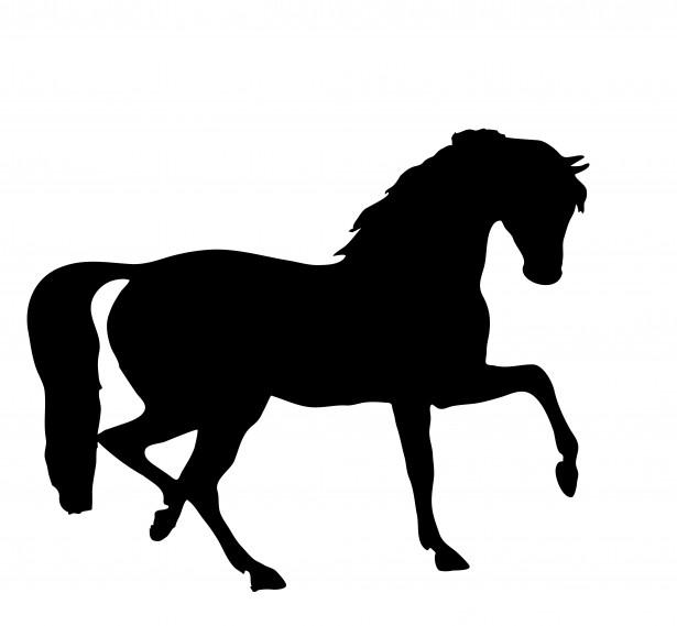 615x569 Quarter Horse Running Silhouette